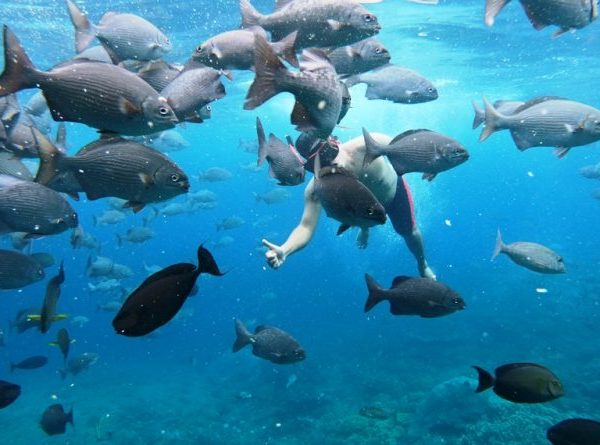Pilih Masker Snorkeling, Perhatikan 6 Poin Ini